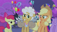 Applejack and Apple Bloom with Goldie Delicious S4E14