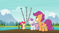 Cutie Mark Crusaders see Wonderbolts in the sky S7E21.png