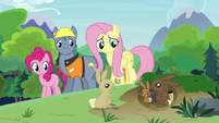 Fluttershy, Pinkie, and Hard Hat observing rabbits S7E5
