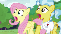 Fluttershy and Dr. Fauna in frightened shock S7E5