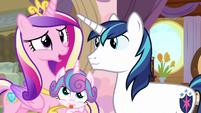 Princess Cadance -oh, wonderful!- S7E22