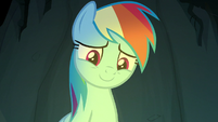 Rainbow Dash smiling warmly at Scootaloo S7E16