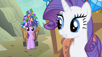 Rarity me, what did I S1E19