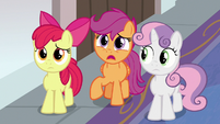 "Scootaloo ""isn't this place for everycreature?"" S8E12"