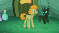Stallion looks at changeling S5E26.png