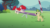 Super-teeth colt helps with teeter-totter S5E18