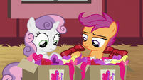 Sweetie and Scootaloo looking at decorations S8E10