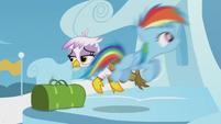 Young Rainbow soars past Gilda S5E8