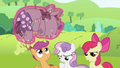 """Apple Bloom """"Yeah. Great."""" S2E03.png"""