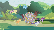 Applejack, Rarity, Twilight, Fluttershy and Rainbow rolling a ball of parasprites S01E10