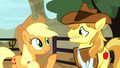 "Applejack ""how am I supposed to focus"" S5E6.png"