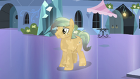 Crystal Pony disappointed S4E24