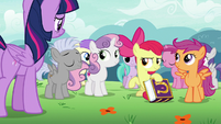 Cutie Mark Crusaders surrounded by fans S7E14