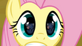 Fluttershy's eyes S02E19.png