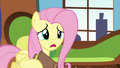 Fluttershy calls Rainbow's name S5E5.png
