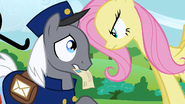 Fluttershy intimidating mail pony S2E19