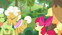 Granny and Goldie pass by AJ and Apple Bloom S9E10