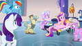 Is there Anypony else S3E12.png