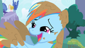 Muddy Rainbow Dash Laughing S1E01.png