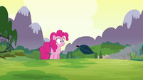 Pinkie Pie sees all her clones gone S3E03
