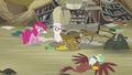 Pinkie and Gilda sees Greta on the ground S5E8.png