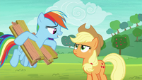 "Rainbow Dash ""emphasis on the slow"" S8E9"