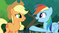 "Rainbow Dash ""you saved us from"" S8E9"