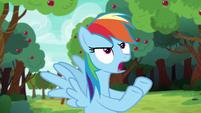 Rainbow Dash --that's ridiculous!-- S6E18