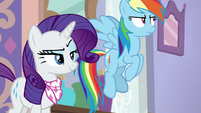 Rainbow Dash rolls her eyes at Rarity S8E17