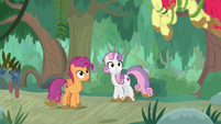 Scoot and Sweetie see Apple Bloom overhead S9E22