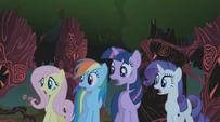 781px-Fluttershy, Rainbow Dash, Twilight and Rarity gasp S01E02
