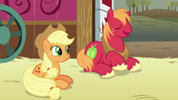 Big McIntosh agreeing with Apple Bloom S6E23