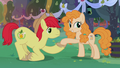 Bright Mac giving Mayor Mare her cue S7E13.png