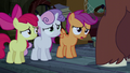CMC don't know the way to Appleloosa S5E6.png