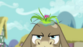 Crankys New Hair Is Biodegradable S02E18.png