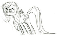 Fluttershy TheStare Sketch
