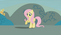 Fluttershy looks at her shadow S1E07.png