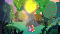 Mac and Sugar under the glowing tree S9E23