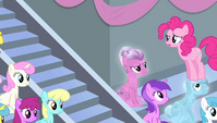 Pinkie sees that Twilight left S4E24