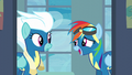 Rainbow Dash being overconfident S6E7.png