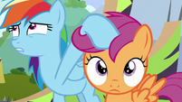 Rainbow Dash reining in Scootaloo S8E20