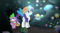 Rarity and Spike look above S6E5