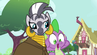 Spike sees Zecora give his jewel away S03E11