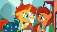 "Sunburst ""it needs to be a real friendship problem!"" S8E8"
