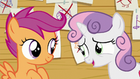 Sweetie Belle --And I know you two aren't interested-- S6E4