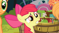 Apple Bloom 'Why is that perfect' S4E09.png