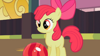 Apple Bloom looks at the pins S2E06