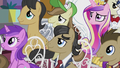 Assorted ponies listening to the mayor S5E9.png