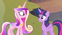 Cadance and Twilight smiling at each other S4E11