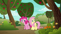 "Fluttershy ""I'm not feeling very confident"" S6E18"